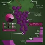 infographic-nadler